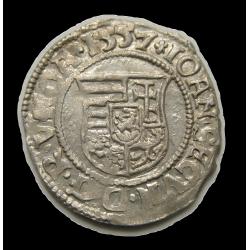 János Zsigmond dénár N-P 1557 Nagybánya