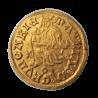 I. (Hunyadi) Mátyás aranyforint ÉH:540 Nagyszeben